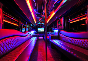 Party Bus Rental Service 45 Person San Diego tours