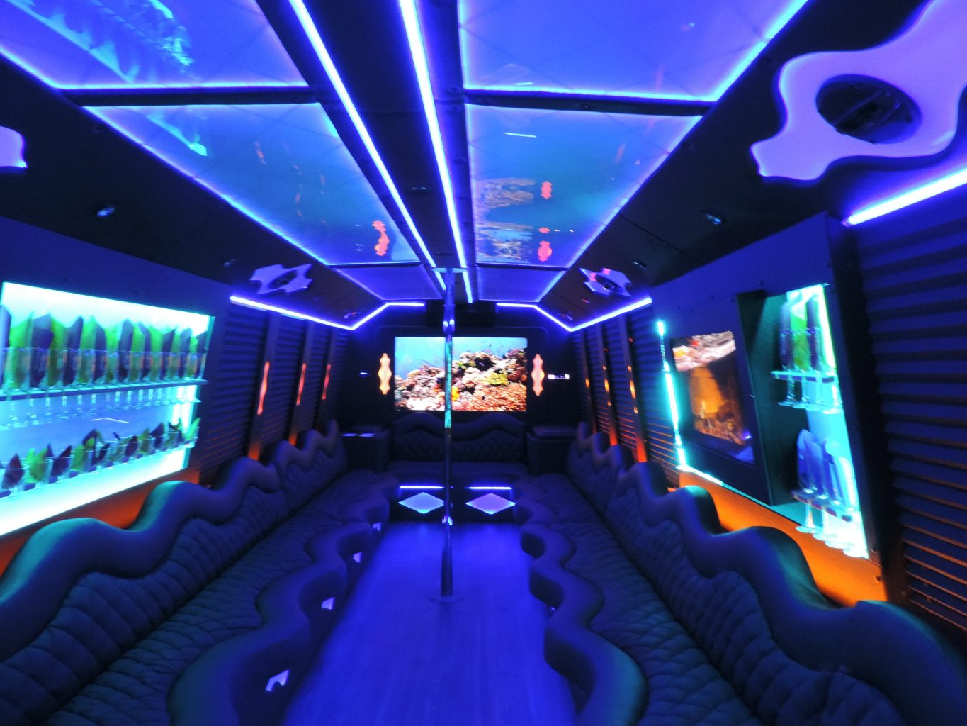 Las Vegas Bus Transportation Rental Party bus Services
