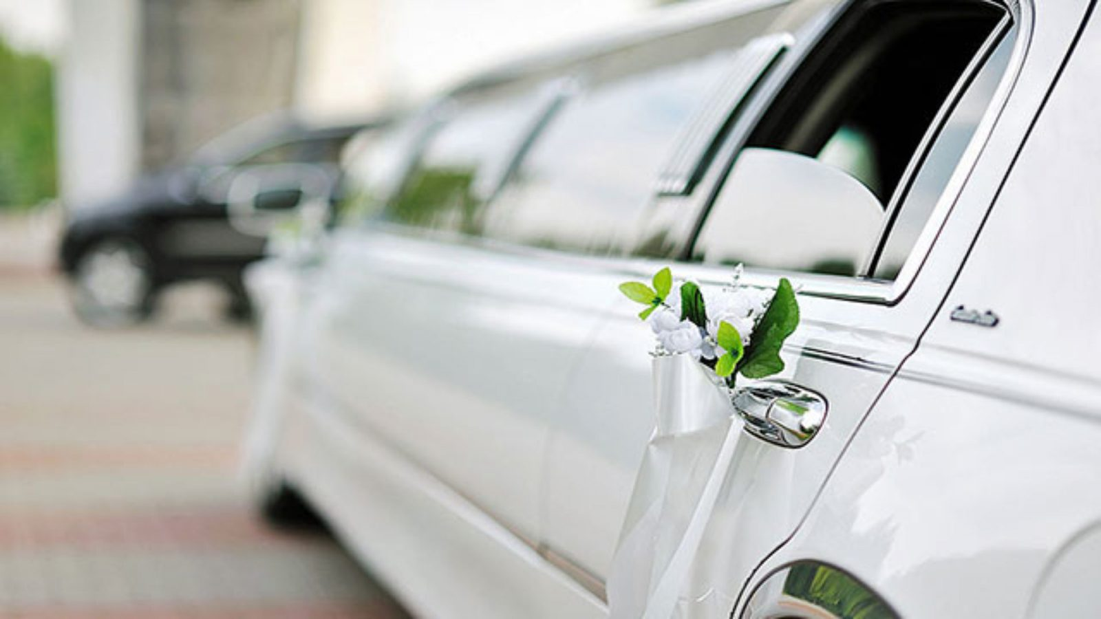 Wedding Party Bus Transportation Services Limo Bus Rental
